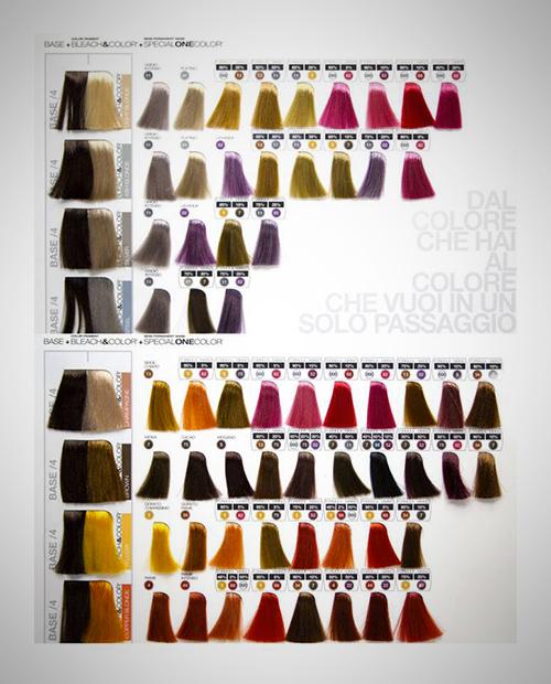 Maschere semipermanenti special one color tendy hair for Cartella colori dikson