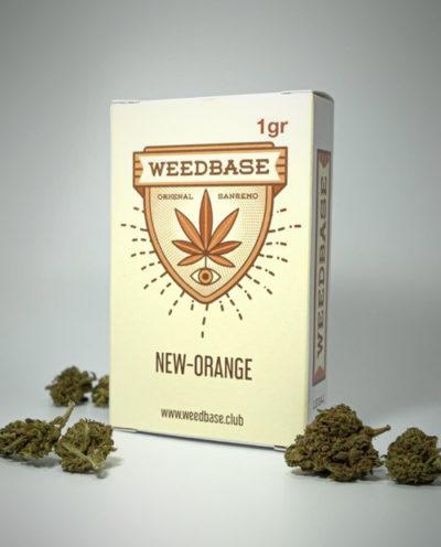 infiorescenze-new-orange-weedbase
