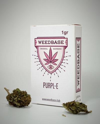 infiorescenze-purpl-e-weedbase